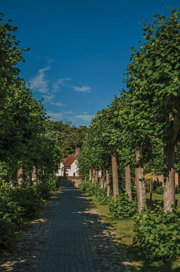 Pathway with trees in garden of medieval church ruins, in the late afternoon light at Damme. stock photography