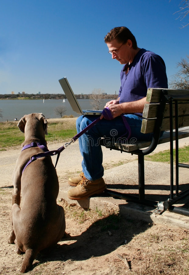 Patience - Dog Waits For Man Working On Laptop Royalty Free Stock Photos