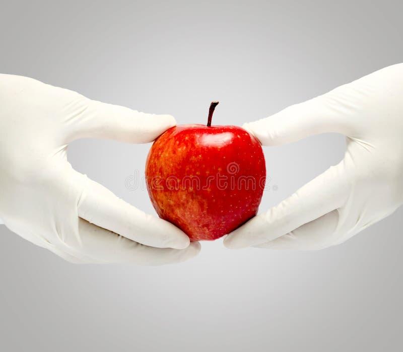 Patientenschulung mit dem frischen Apfel, der in einer Hand herein lokalisiert hält lizenzfreie stockfotografie