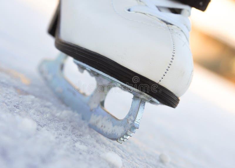 Patim de gelo imagens de stock