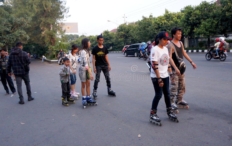 Patin images stock