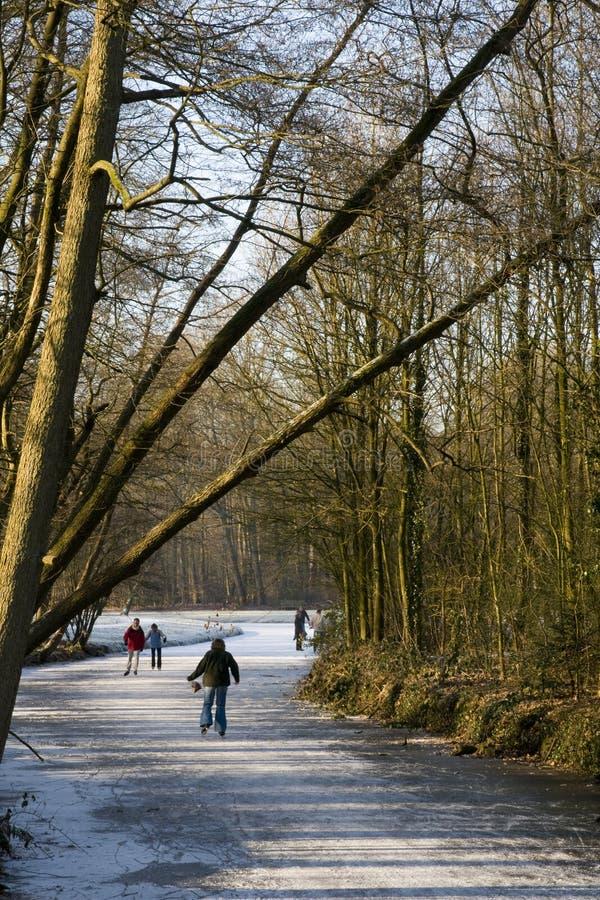 patinage normal de glace photographie stock libre de droits