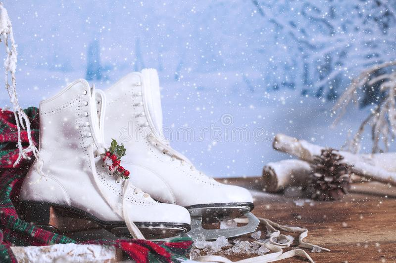 Patinage sur glace blanche avec Holly photographie stock