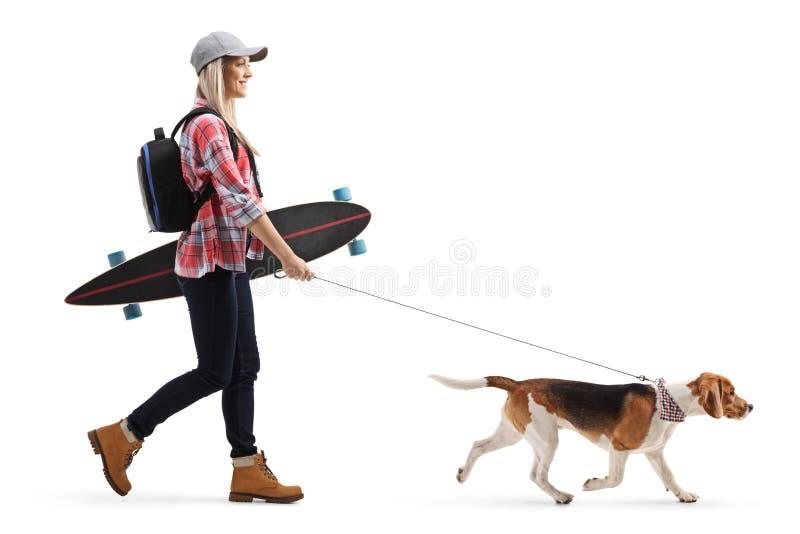 Patineur féminin avec un longboard marchant un chien de briquet photo stock