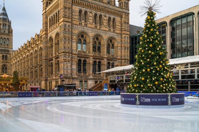 Patinoire et arbre de Noël au musée national d'histoire à Londres photographie stock libre de droits