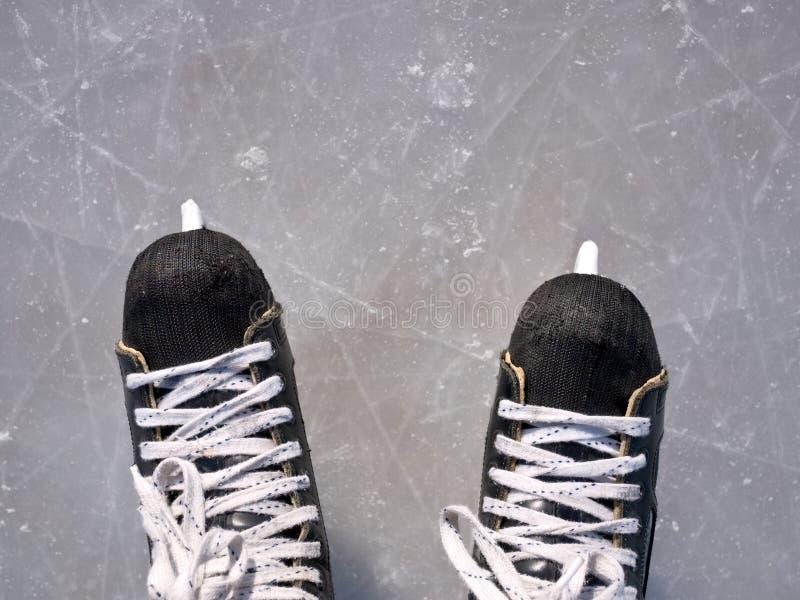 Patins do hóquei no gelo fotos de stock