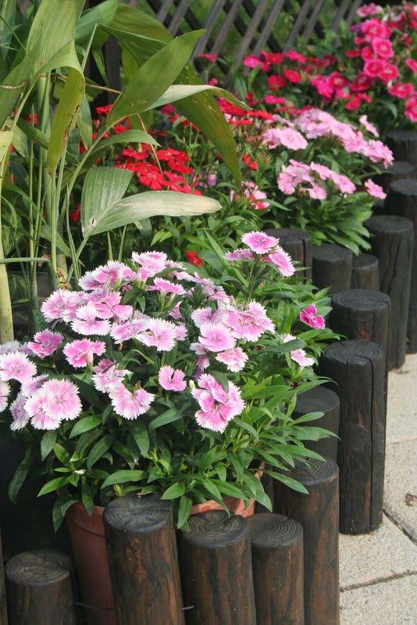 patio κήπων στοκ εικόνες