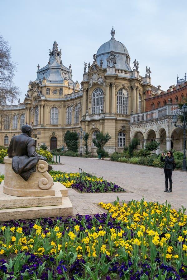Patio del castillo del vajdahunyad, Budapest imagen de archivo