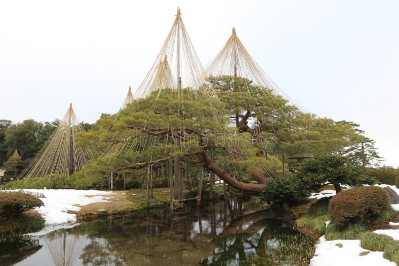 Patio du Japon photo libre de droits