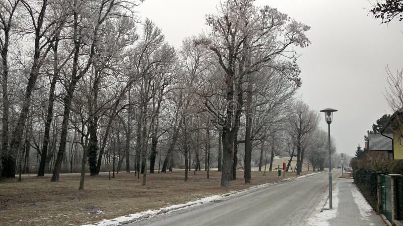 Patio frío escarchado de Austria Florianigasse de la nieve de las calles del invierno fotografía de archivo