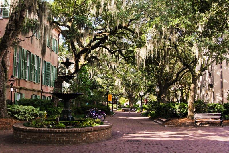 Patio para la universidad de Charleston, Carolina del Sur foto de archivo