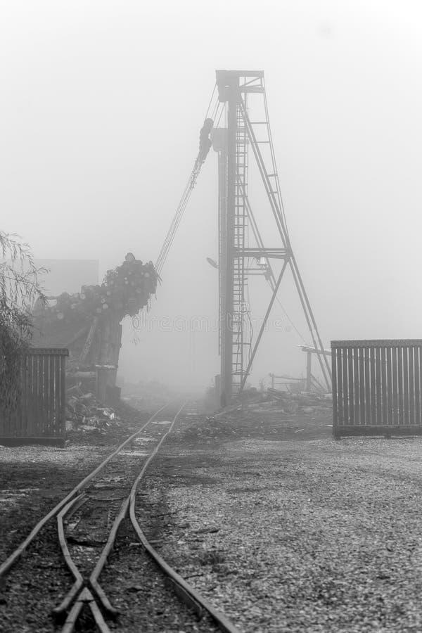 Patio trasero de la fábrica de la madera fotos de archivo libres de regalías