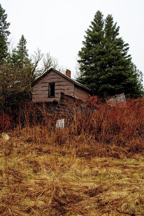 Patio trasero de una casa abandonada en el bosque imagen de archivo