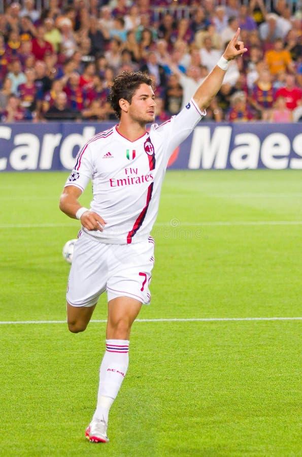 Pato celebrating a goal royalty free stock image