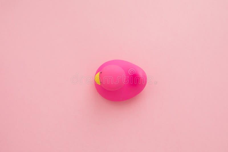 Pato de borracha isolado no fundo cor-de-rosa fotografia de stock royalty free