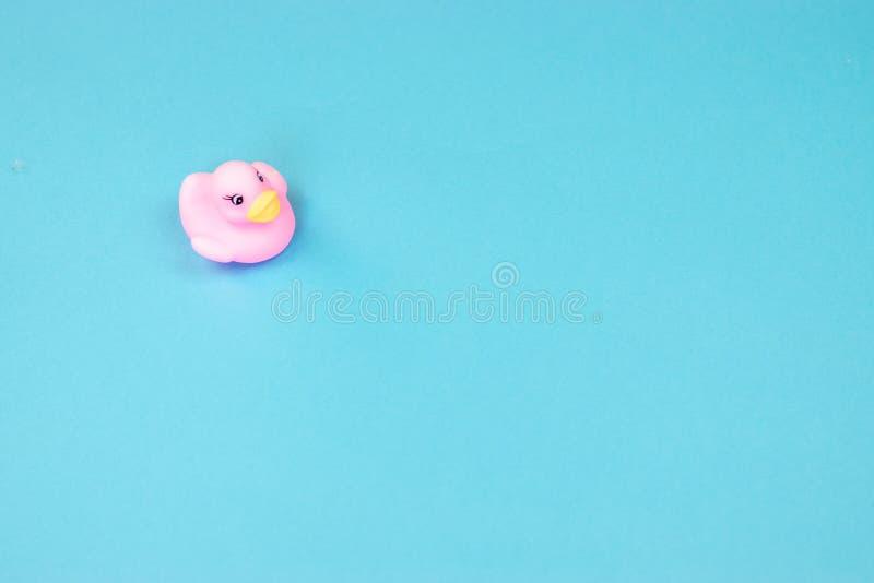 Pato de goma del ba?o en fondo colorido Opini?n superior sobre el pato de goma del juguete Juego del juguete para la flotaci?n du imagen de archivo libre de regalías