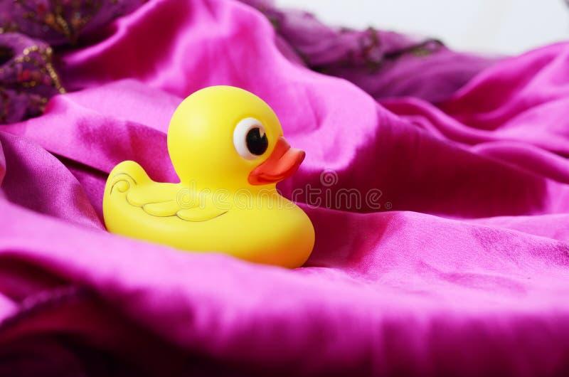 Pato del baño foto de archivo