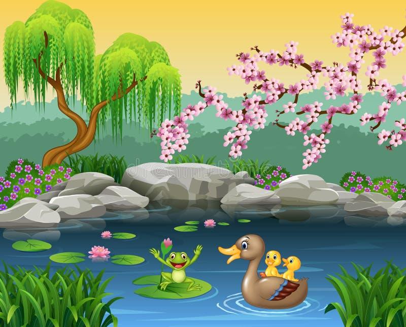 Pato divertido de la madre de la historieta con la rana en el agua del lirio stock de ilustración