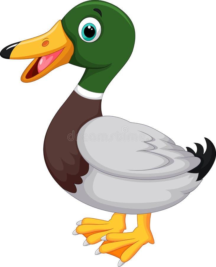 Pato lindo de la historieta stock de ilustración
