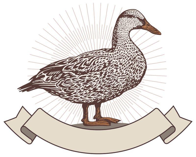 Pato no estilo gráfico ilustração do vetor