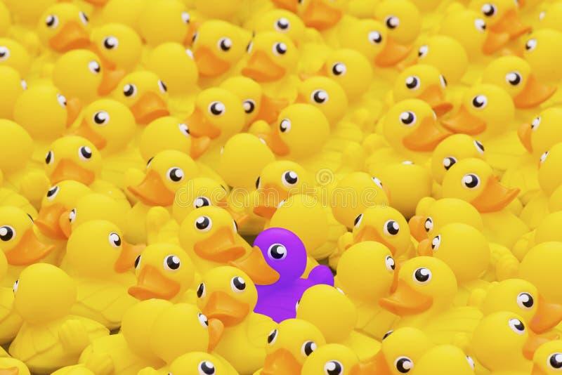 Pato púrpura único del juguete entre muchos amarillos Colocación hacia fuera de fotografía de archivo libre de regalías