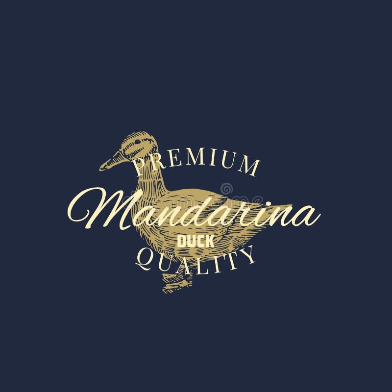 Pato superior de Mandarina Sinal, símbolo ou Logo Template abstrato do vetor das aves domésticas Mão tirada gravando Duck Sillhou ilustração stock
