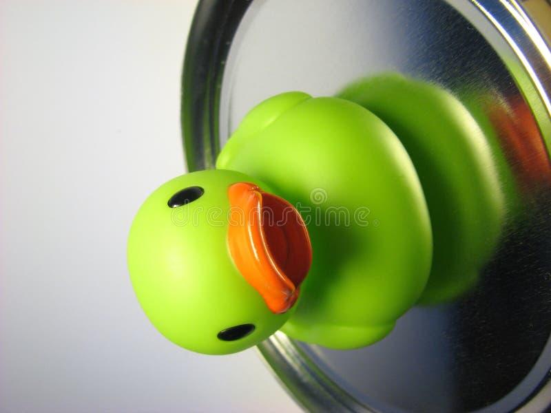 Pato verde 14 da goma imagem de stock