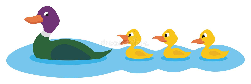 Patos ilustração stock