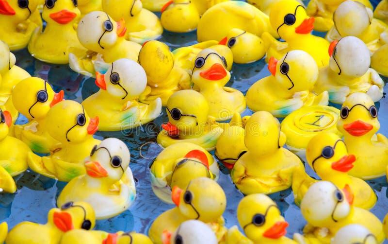 Patos de goma con los vidrios fotos de archivo