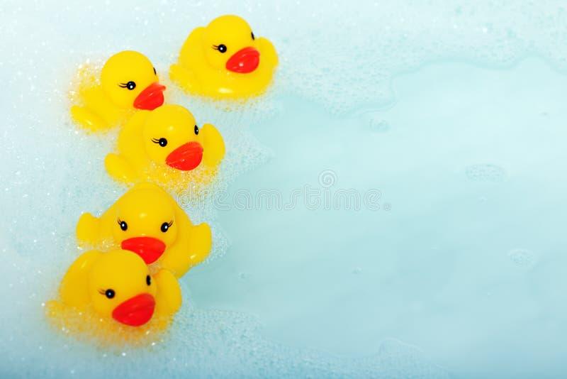 Patos de goma en espuma fotos de archivo libres de regalías