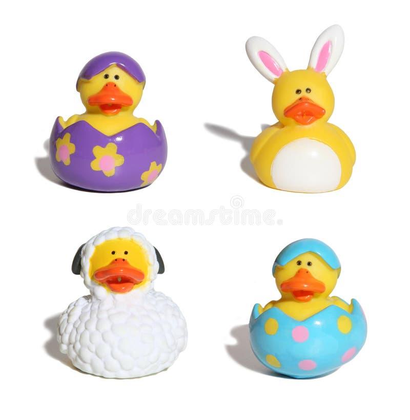 Patos de Pascua fotografía de archivo libre de regalías