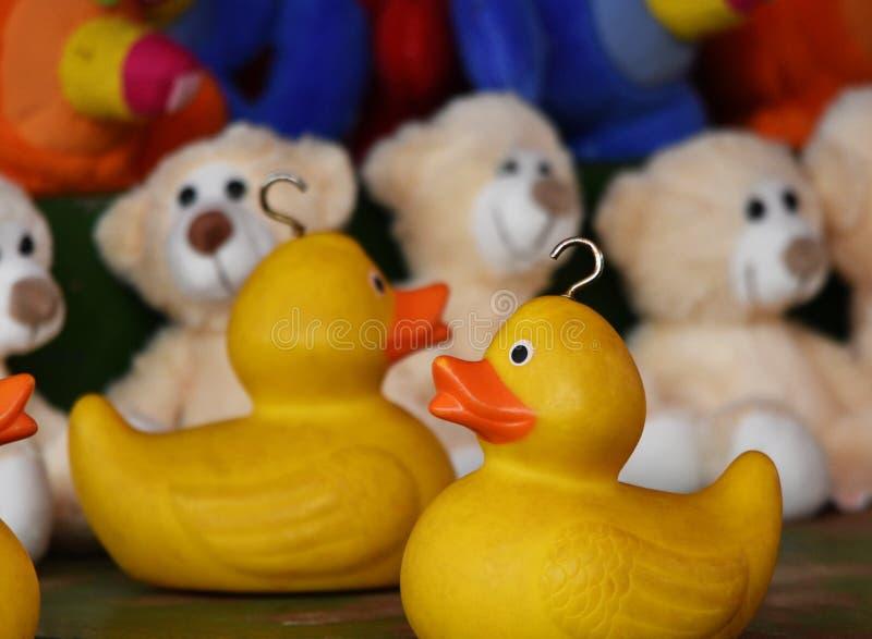 Patos del parque de atracciones imágenes de archivo libres de regalías