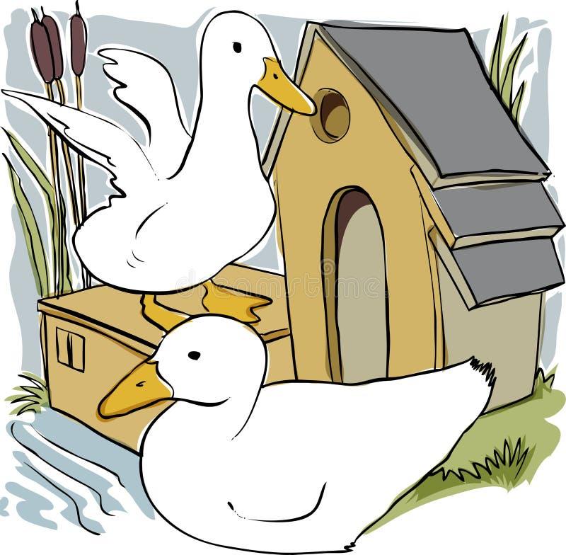 Patos e casa ilustração do vetor