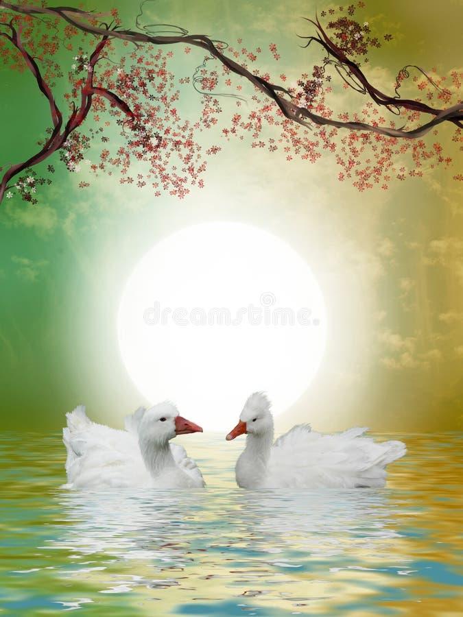 Patos en el lago