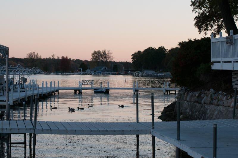Patos nas docas no lago Delavan, Wisconsin no crepúsculo fotografia de stock