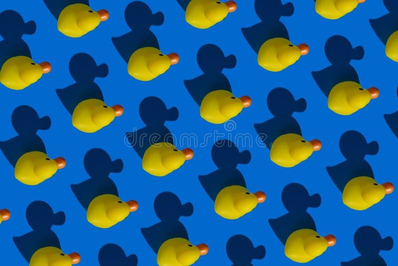Patos y sombras de goma amarillos imagenes de archivo
