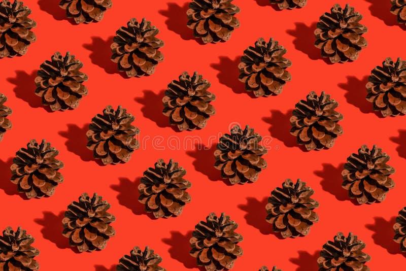 Patrón de conos de pino imagen de archivo