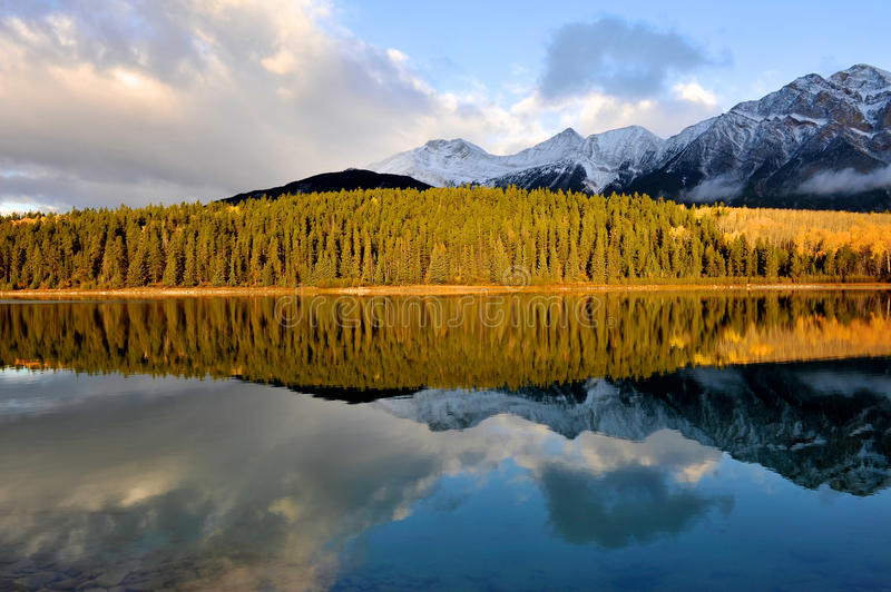 Patricia Lake in the morning stock images