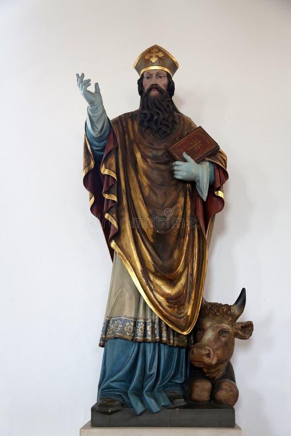 patrick saint arkivbilder