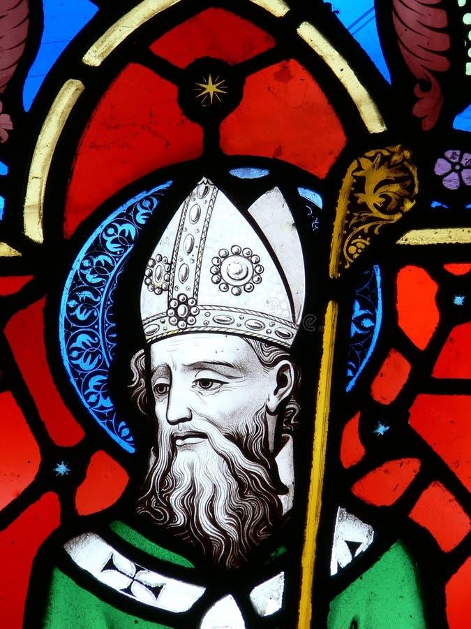 patrick saint royaltyfria foton