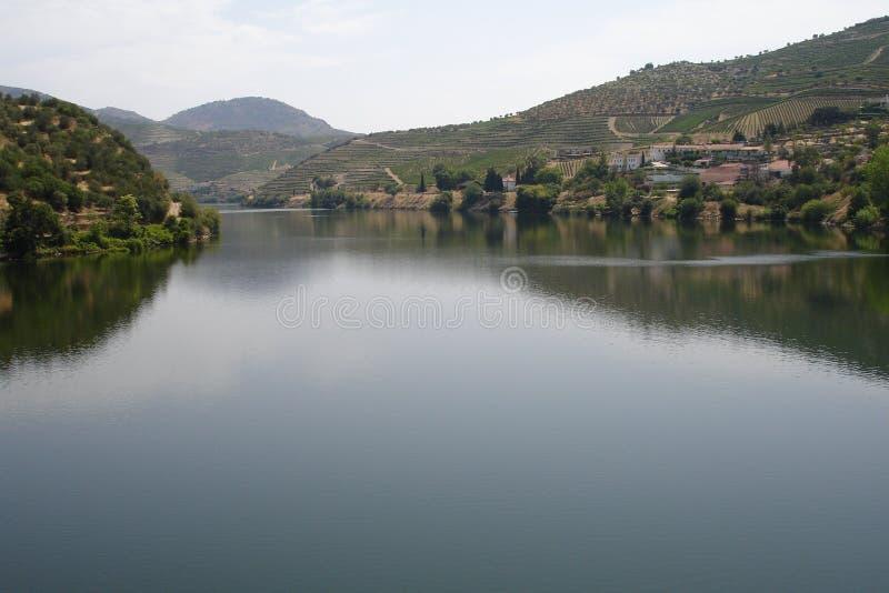 Património mundial da região do vinho de Douro do alto fotografia de stock royalty free
