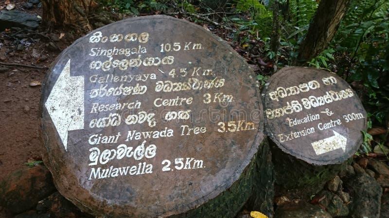 Patrimônio mundial de Singharaja de Sri Lanka foto de stock royalty free