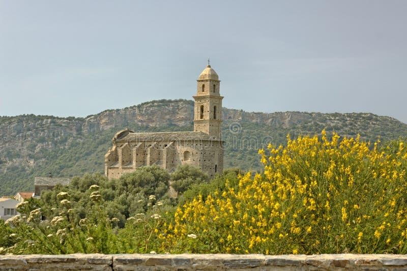 Patrimonio, chiesa del XVI secolo di St Martins, Cap Corse, Corsica del Nord, Francia immagine stock libera da diritti