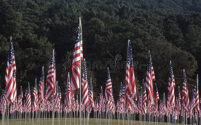Patriotic Holiday flag display in America. To acknowledge fallen soldiers and citizen victims of terrorism stock image