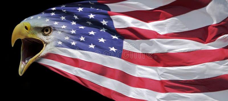 Patriotische Weißkopfseeadlerflaggenfahne stock abbildung