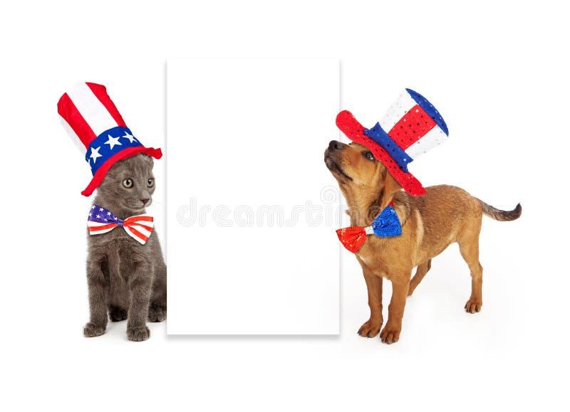 Patriotisk valp och Kitten Blank Sign arkivfoto