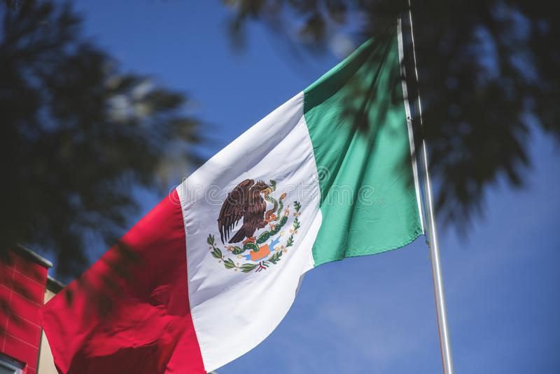 Patriotiskt symbol för mexicansk flagga; ³ n för Bandera de México simbolopatrio de esta nacià arkivbild