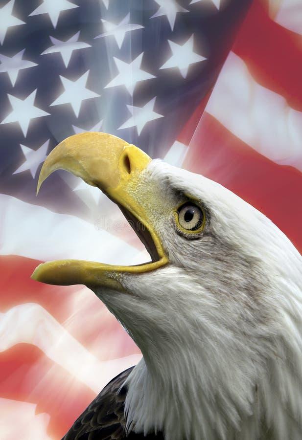 Patriottische Symbolen - de V.S. royalty-vrije stock foto