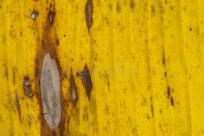 Patronen en texturenbanaanbladeren, kleurrijke groen, geel en droog Close-up van de textuur abstracte achtergrond selectief F van royalty-vrije stock foto