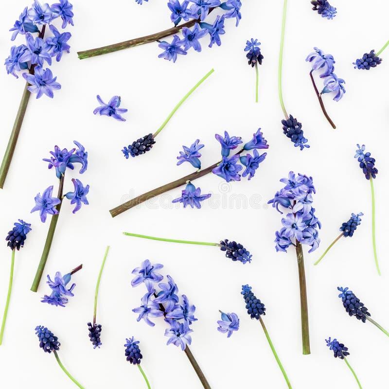 Patroon met blauwe of roze bloemen en bloemblaadjes op witte achtergrond Vlak leg, hoogste mening stock afbeelding